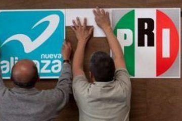 """El Panal espera """"luz verde"""" de su dirigencia nacional para aliarse al PRI en QROO"""