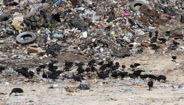 Incumple empresa quien tenía la concesión del tratamiento de la basura en OPB