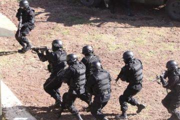Gendarmería Nacional mexicana iniciaría funciones el 22 de agosto
