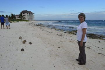 Playa Del Carmen Requiere Un Malecón: Laura Beristain