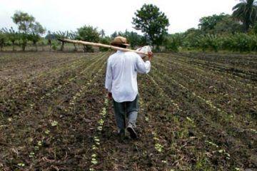 """Campesinos por las nuevas reglas fiscales sólo pueden beneficiar a los intermediarios o """"coyotes"""""""