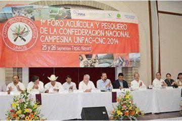 Se Pronuncia La CNC Por La Creación De La Secretaría De Pesca Y Acuacultura