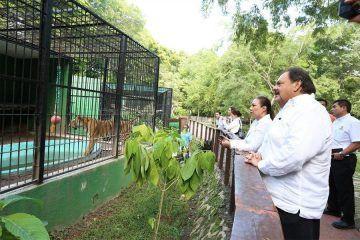 Zoológico Payo Obispo recibirá especies aseguradas por la PROFEPA