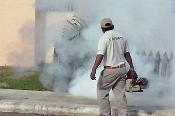 Sesa mantiene alerta epidemiológica por Chikungunya