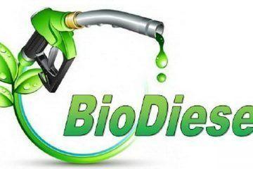 Q. Roo será pionero en Producción de Biodiesel