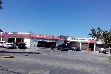 Se cae a pedazos el Mercado Municipal Andrés Quintana Roo
