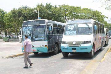 Regidores pugnan por tarifas de transporte justas