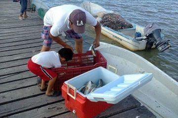 Veda complica situación de pescadores de Holbox y Chiquilá