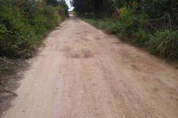 Productores piden apoyo para mejorar caminos saca cosechas