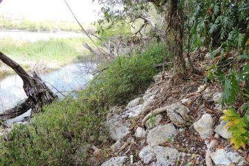 Ejidatarios del Cedral solicitan apoyo del INAH para reactivar sitios arqueológicos