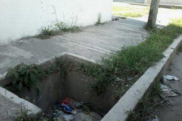 Reconoce Sema deficiente manejo de la basura en Quintana Roo