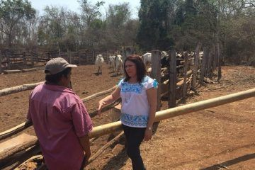 Con los campesinos, la prioridad debe ser productiva, no electorera: Rosa Adriana Díaz Lizama