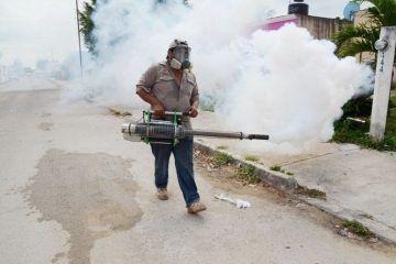 Reactiva SESA protocolo para prevenir paludismo y dengue
