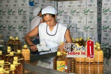 """Burocratismo impide comercializar en gran escala el """"tequila de Quintana Roo"""""""