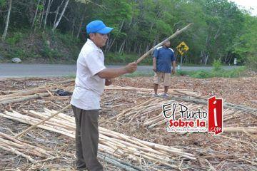 Laguna Kaná cumple castigo y anticipa que aprovechará sus recursos forestales para promover el ecoturismo