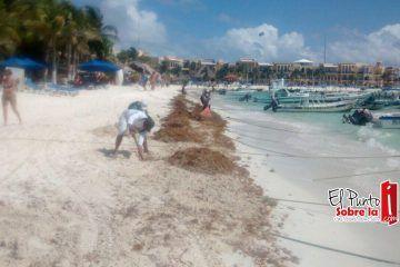 Mauricio Góngora trabaja por la conservación de las playas