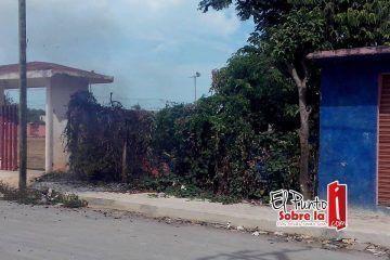 Quemas clandestinas de vecinos amenazan a Chetumal