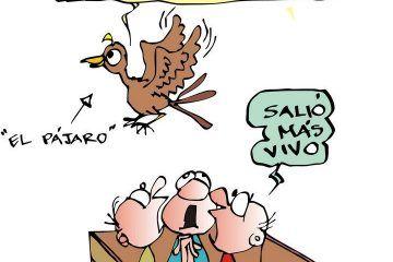 COLINAS: Saliéndose Del Huacal #caricatura