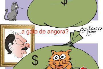 COLINAS: Simbiosis #caricatura