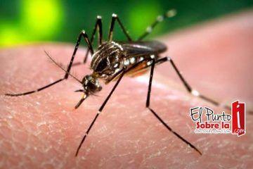 Presume SESA que no hay Zika en Quintana Roo