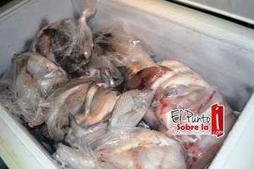 Cofepris inspecciona venta de mariscos y pescados en FCP