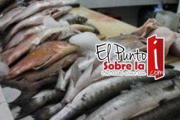 Suspende Cofepris 12 negocios de Bacalar y Chetumal