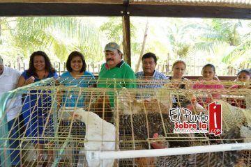 Abuxapqui construyó 53 gallineros comunitarios