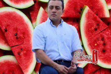 """¿Luis Alamilla, el diputado """"Sandía""""?"""