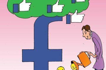 LUY: Huerto social