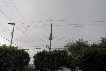 Varios sectores de Chetumal sin electricidad por lluvias y vientos