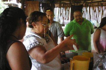 Buscan extender conocimientos de medicina tradicional