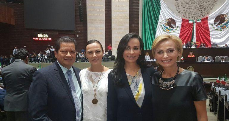 Laura Fernandes En La Camara De Diputados