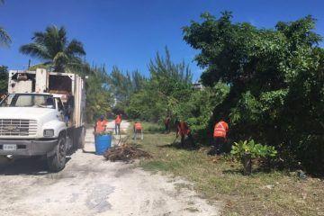 Lleva Ayuntamiento de Isla Mujeres brigadas de limpieza a Punta Sam