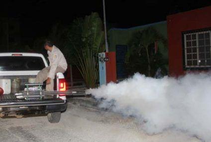 Reanudó Dirección de Salud fumigación para combatir vectores