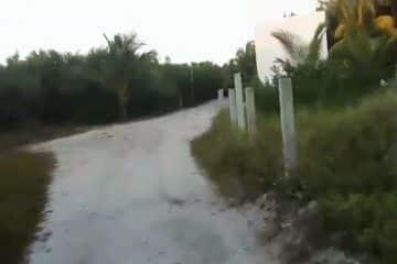 Video: exigen al alcalde Emilio Jiménez, frenar depredación al entorno natural de Holbox
