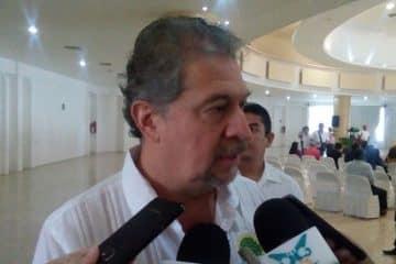 La SEMA, a ciegas ante la tala clandestina que impacta a Quintana Roo