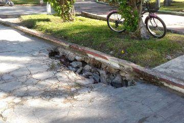 Parque Alameda pide a gritos una remodelación a su deteriorada infraestructura