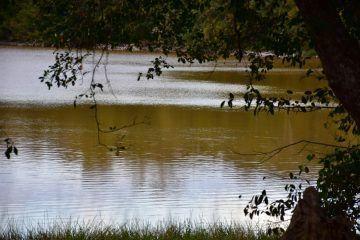 Por escasez de agua, habitantes podrían convertir a Plan de la Noria en 'pueblo fantasma'