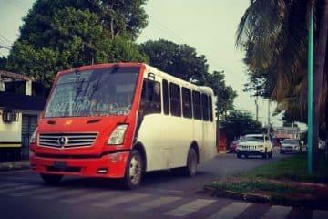 Empresas de transporte, indecisas para entrarle al servicio urbano en Chetumal