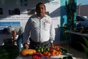 Zona Maya lidera producción de chile en Quintana Roo