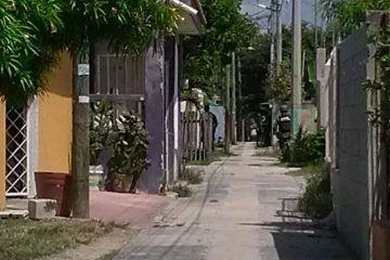 Cateo en la Colonia Santa María de Chetumal