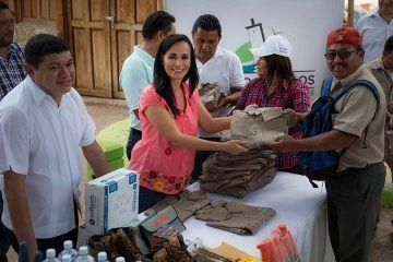 Servicios Públicos redobla esfuerzos para preservar un Puerto Morelos limpio