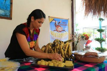 Consolida Solidaridad apertura de pequeñas y medianas empresas