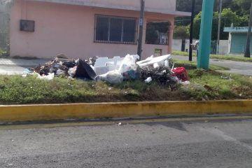 Inundadas de basura las banquetas de diversas colonias costumbre ciudadana