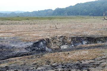 UMA prácticamente descartado en la Laguna de Chakanbakán