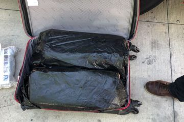 Un cargamento de 20 kilos marihuana en Playa del Carmen