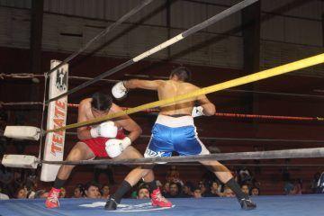 """Boxeadores vallisoletanos dan """"el grito del triunfo"""" en la función profesional anoche"""