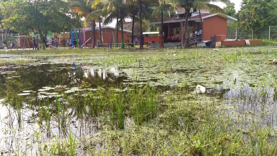 Escuela preescolar bajo el agua