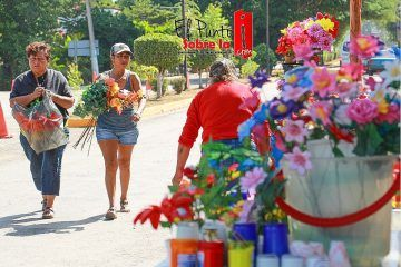 Cobra vida el Cementerio General de Valladolid