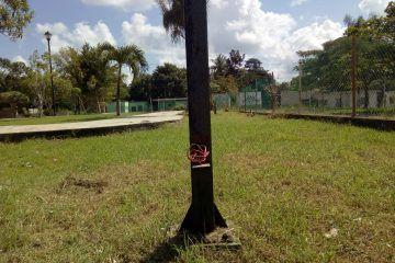 Dejan sin cableado eléctrico parque de la colonia Guadalupe